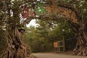 炎と森のカーニバル:ゲート